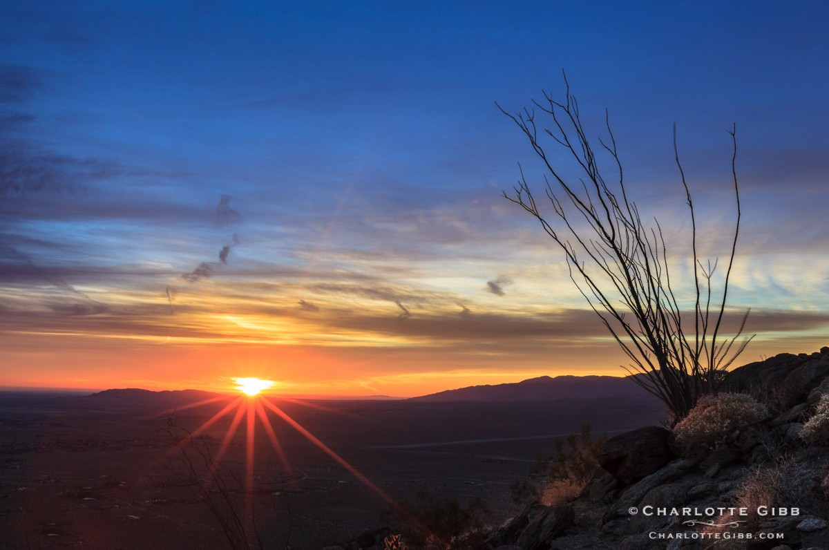 Borrego Desert Sunrise 2014