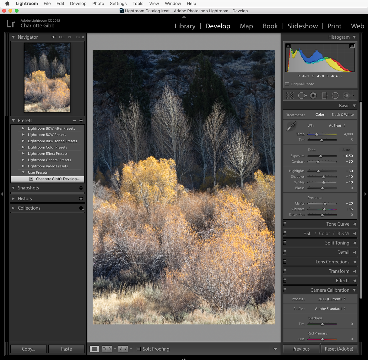Processing photos in Photoshop. Some techniques for creating ideal shots